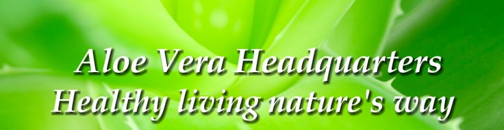Using Aloe Vera for Acne Scars is one of the best methods to treat, prevent and heal Acne breakouts Acne is a hard skin condition to control but Aloe Vera can help!!!  Aloe Vera for Acne Scars and More | Aloe Vera | Aloe Vera Blog | Aloe Vera Headquarters