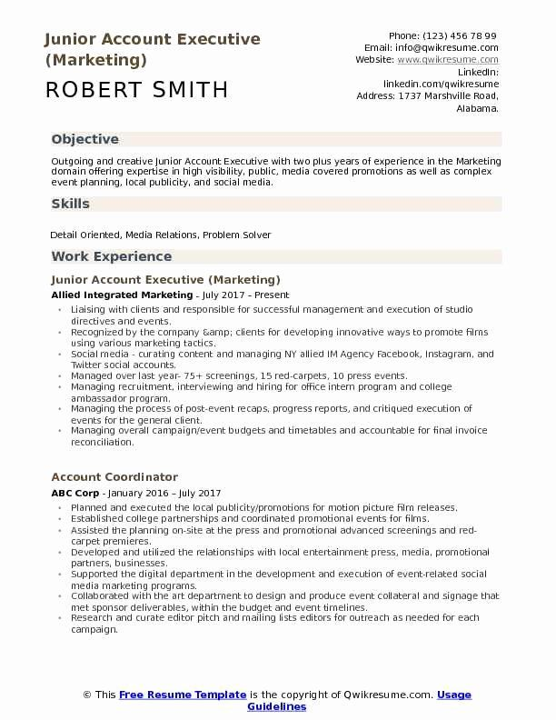 Advertising Account Executive Resume Best Of Junior Account Executive Resume Samples Executive Resume Template Executive Resume Account Executive