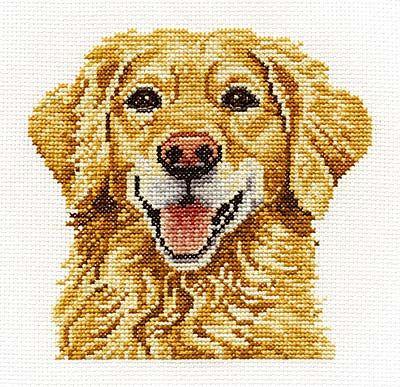 Golden Retriever Cross Stitch Kit by DMC