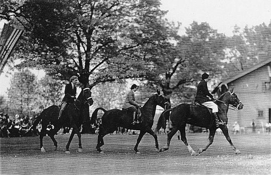 """History of Equestrian Fashion: 3 Women Equestrian Riding at the University of Wisconsin Madison in 1925. """"Three women equestrians at the University of Wisconsin--Madison. During the mid 1920s equestrian courses were taught in the Department of Physical Education for Women, horse shows were held on campus, and several riding related clubs were active"""" - Image found on the University of Wisconsin Digital Collections Flickr Galleries"""