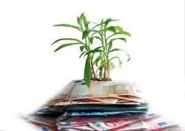 Earth Day Italia-Fao, il futuro è della finanza etica - Parliamo di Cucina