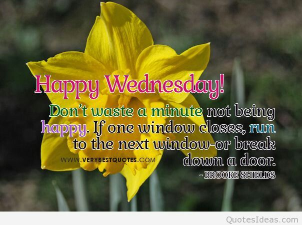 Wednesday Quotes Inspirational Humor: 191 Best Images About Wednesday Humor On Pinterest