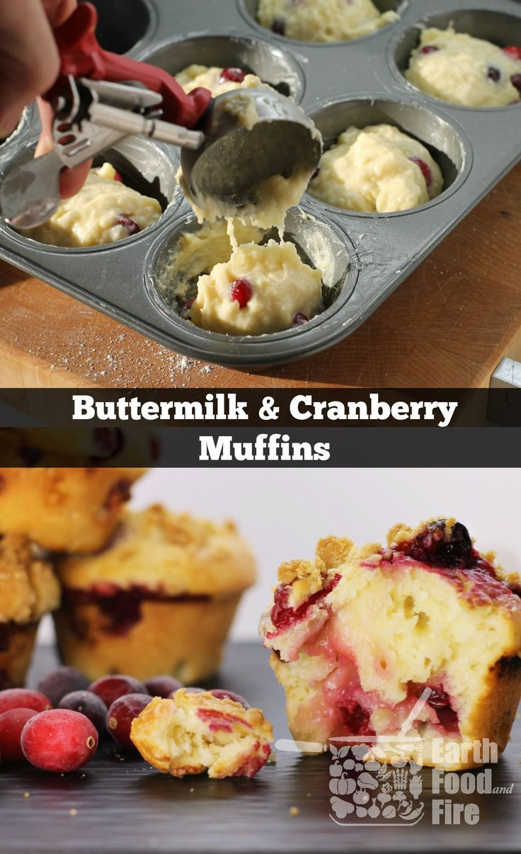 1000+ ideas about Cranberry Muffins on Pinterest | Muffins, Cranberry ...