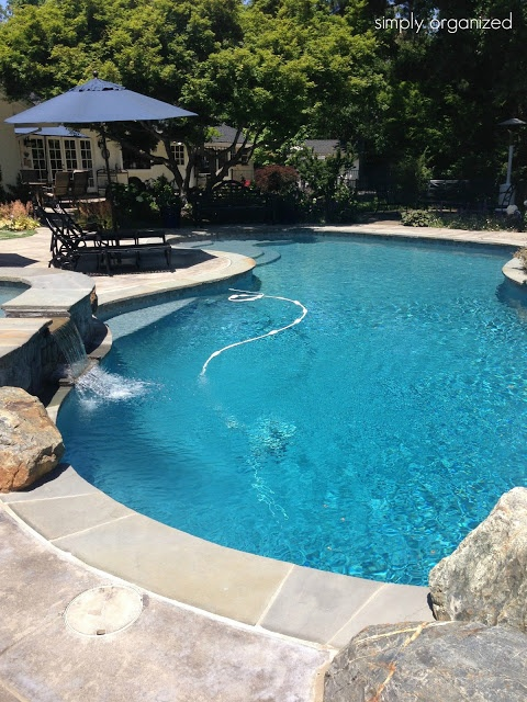 I Have Always Wanted My Own Swimming Pool In My Backyard No Crowds No People No Caring What