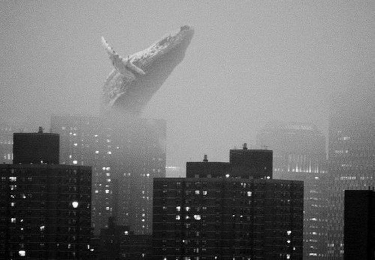 кит над городом: 20 тыс изображений найдено в Яндекс.Картинках