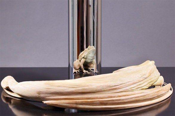 Le incredibili sculture anamorfiche di Jonty Hurwitz