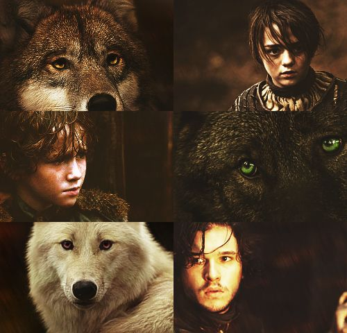 A Lady And Her Dire Wolf: 1000+ Images About Game Of Thrones On Pinterest