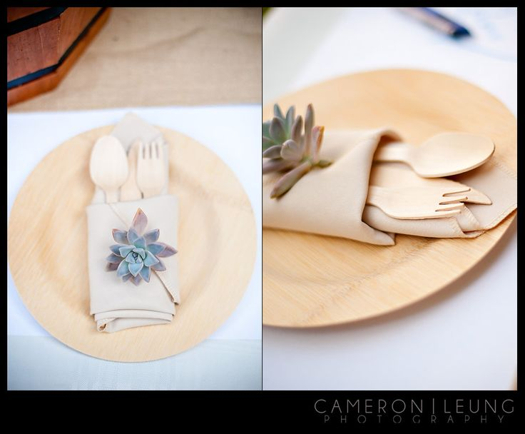 10 best bamboo plates images on pinterest bamboo plates wedding compostable tableware with succulents bamboo plates weddingwedding junglespirit Choice Image