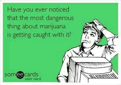 The most dangerous thing about responsible marijuana consumption is the possibility of the government destroying your life. It's just a plant.