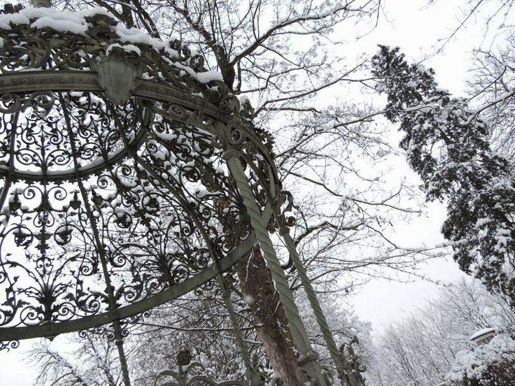 The Girl from Fairyland: Neu! #photography #blackandwhite #b&w #snow #winter #garden