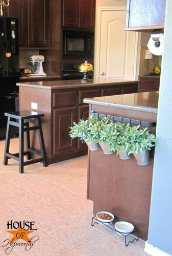 Towel Rack used as Plant Hanger...great way to keep some of your favorite fresh herbs growing with reach of the cook!