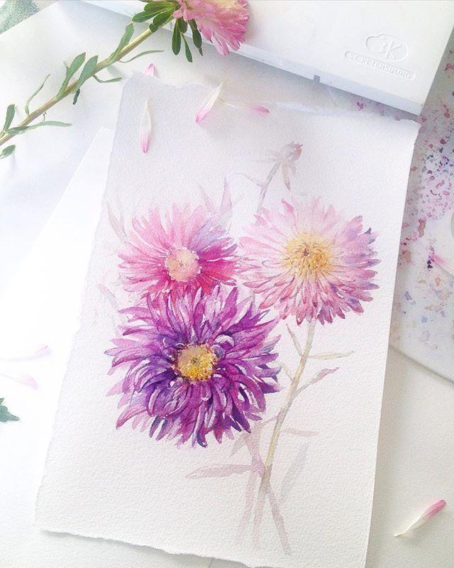Астры #aqvarelle #watercolorillustration #acvarell #acvarell #watercolorflowers #watercolor #waterblog