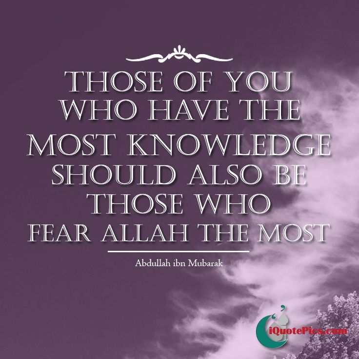 Knowledge is only possessed to increase in obedience to Allah. The learned should never compromise and show the way to the laymen without favouring any kings or those in power.