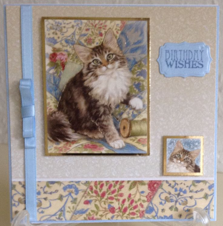 Made from Hunkydory Paws for Thought with Centura Pearl.