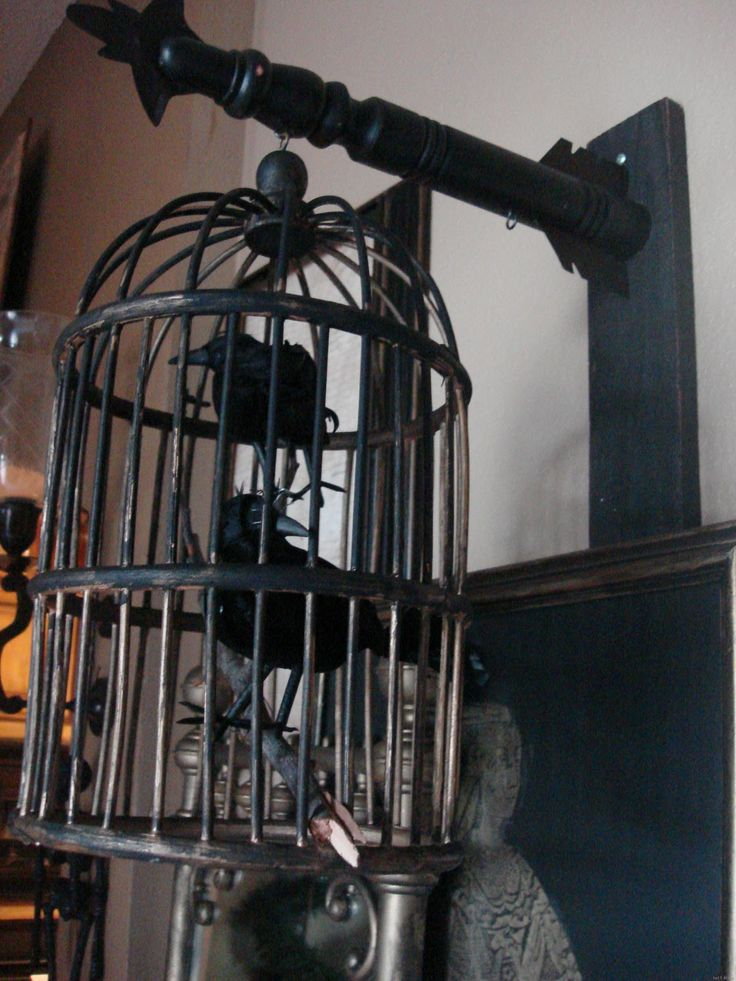in love with this caged bird idea for everyday decor not even for halloween - Halloween Display Ideas