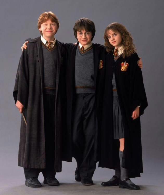 Ron Weasley Harry Potter Und Hermine Granger Harry Potter Halloween Costumes Harry Potter Outfits Harry Potter Halloween