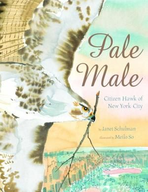 PALE MALE by Janet Schulman, Meilo So