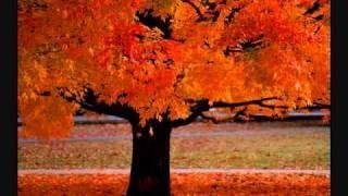 Four Seasons ~ Vivaldi, via YouTube.