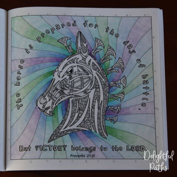 Proverbs adult coloring book from Delightful Paths Proverbs 21:31 NASB