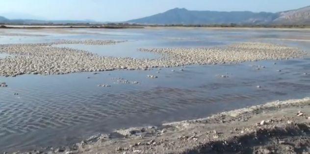Sea salt Lagoons of Messologi, Central Greece