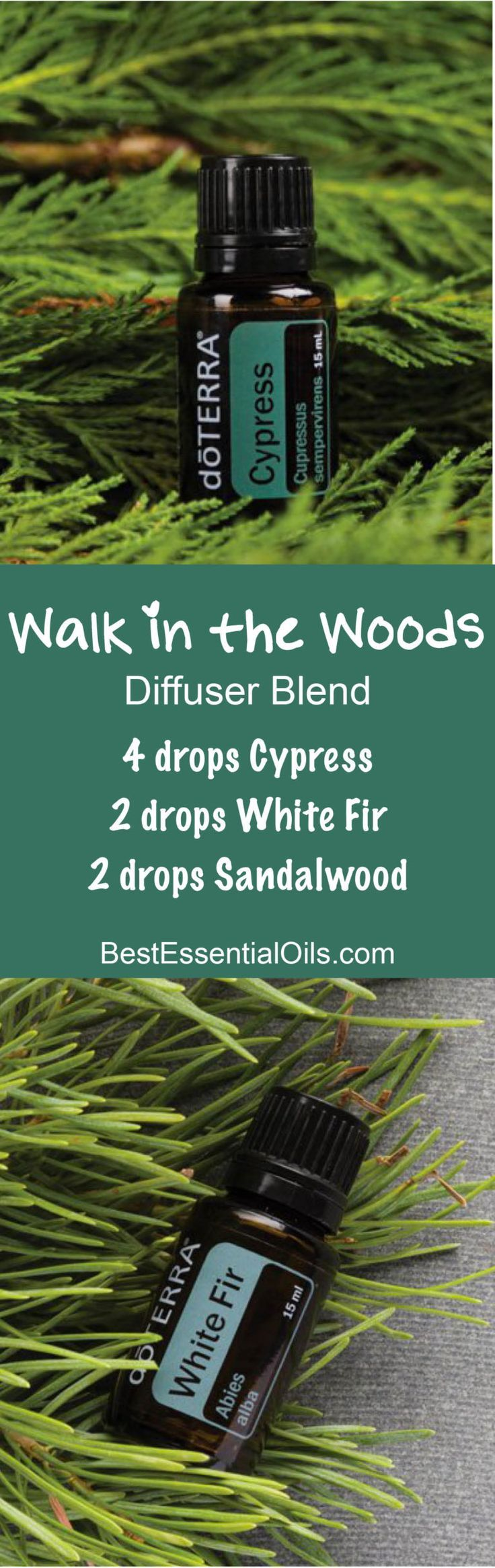 Walk in the Woods doTERRA Diffuser Blend