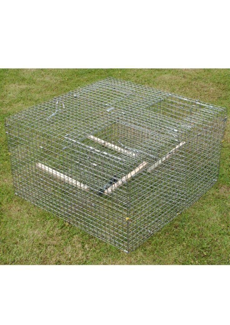 A larsen trap