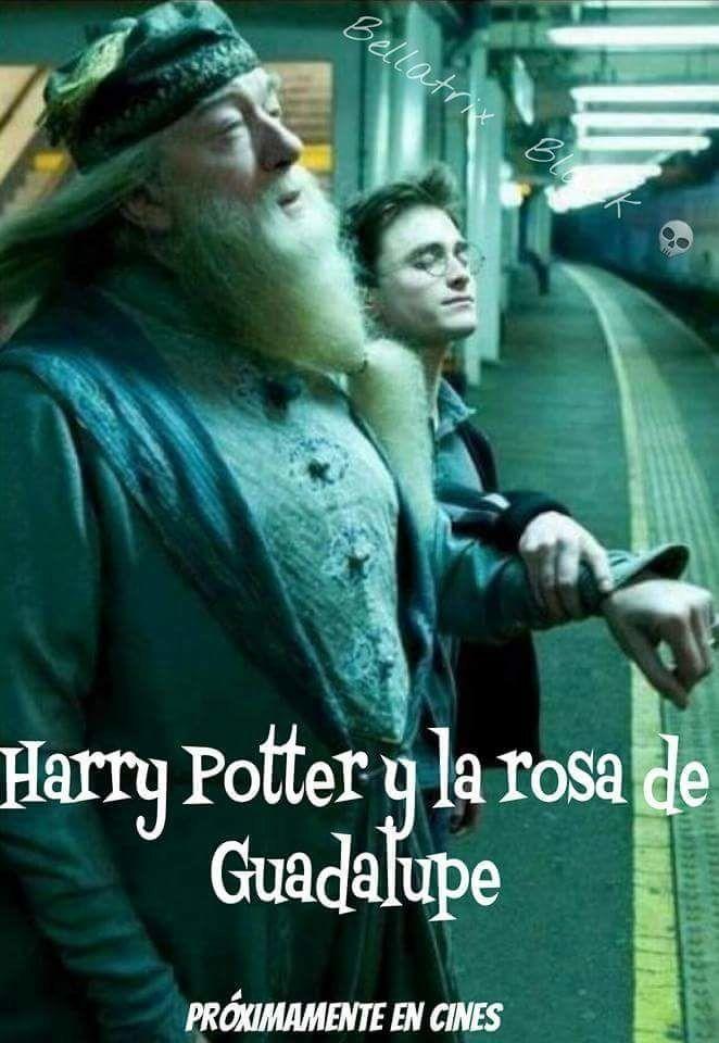 100 Memes de Harry Potter tan mágicos que te matarán de risa – #HarryPotterMem…