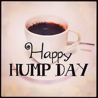 Happy Hump Day quotes quote wednesday hump day wednesday quotes happy wednesday happy hump day happy wednesday quotes
