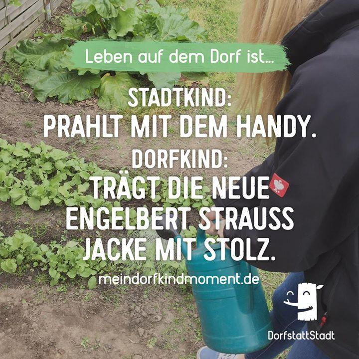 Ein paar neidische Blicke abholen - http://ift.tt/2t8rSot - #dorfkindmoment #dorfstattstadt