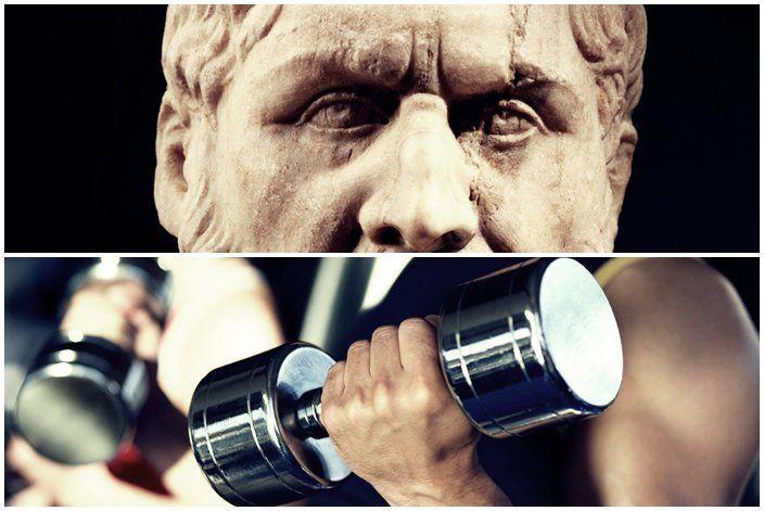"""""""O que aprendi com a academia de ginástica é que ela tem muito em comum com outra academia, a de Platão. Eu sei, é uma ideia idiota, afinal, as pessoas que frequentam a academia (de ginástica, não a de Platão), não são reconhecidas exatamente por suas habilidades intelectuais."""""""