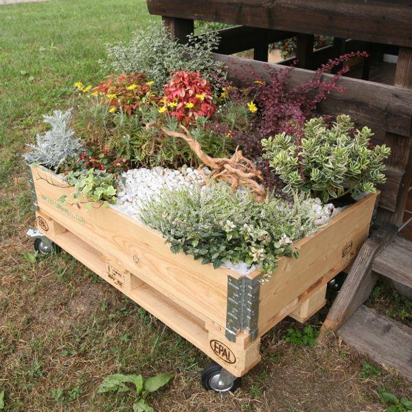 30 best ORTO images on Pinterest | Outdoor gardens, Herbs garden and ...
