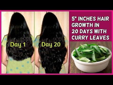 Grow Long hair fast in 20 days with Curry Leaves - No hair loss and fast hair growth - YouTube