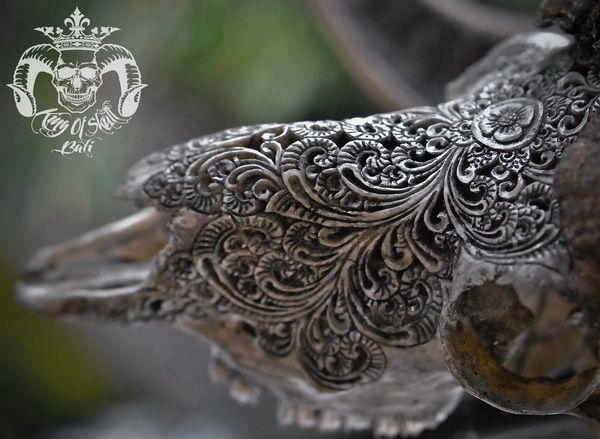 Hand Carved Indonesian XL Ram Skull in Grey Finishwith XL Horn and Lovely Flower Filigree PatternGreat Oddities Taxidermy For Home DecorFind this Skull on Etsy