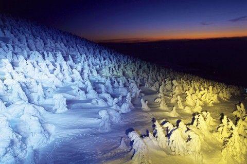これぞ冬のアート!樹氷や滝のライトアップイベント【関東・東北】