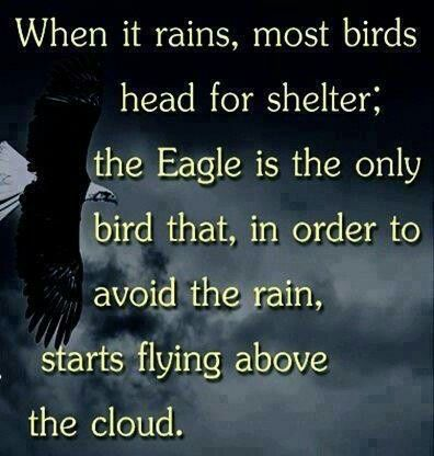 When it rains, most birds head for shelter; the Eagle is the only bird that, in order to avoid the rain, starts flying above the cloud.