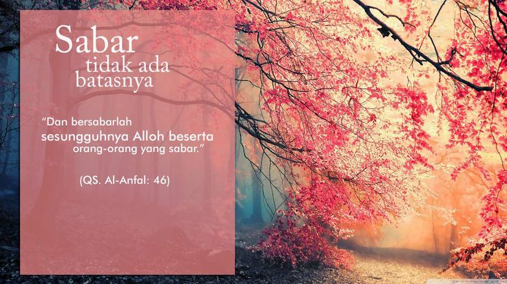 Orang sabar disayang Allah. :D #quoteoftheday #quote #bestquote #islamicquote