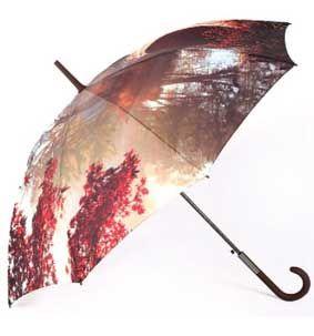 Wholesale ladies umbrellas UK - ZEST