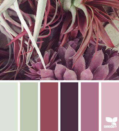 #colorpalette succulent tones
