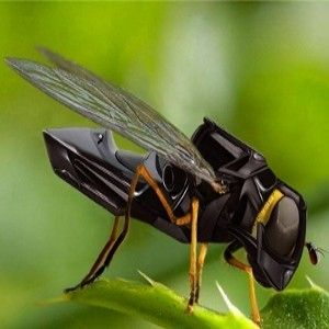 Robotic fly -  each a processor then add a swarm of a 100 or 1 million.. Multi processor hive mind.. What task?