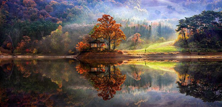Zjawiskowa, złota, południowokoreańska jesień (fot. Jaewoon U)