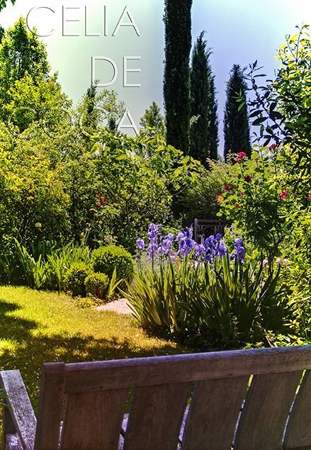 Paisajismo - Jardín diseñado por Caroline Wiggin, fotografía: Celia de Coca by celia de coca, via Flickr