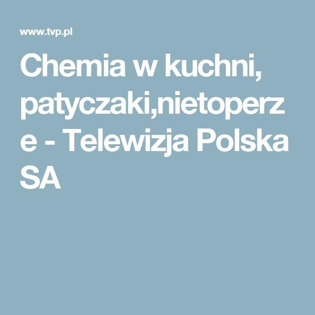 Chemia w kuchni, patyczaki,nietoperze - Telewizja Polska SA
