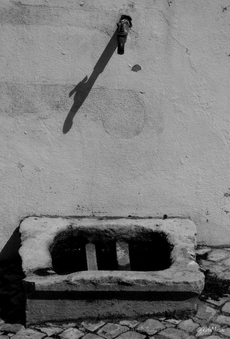 'Sei que seria possível construir o mundo justo  <br />As cidades poderiam ser claras e lavadas  <br />Pelo canto dos espaços e das fontes  <br />O céu o mar e a terra estão prontos  <br />A saciar a nossa fome do terrestre  <br />A terra onde estamos — se ninguém atraiçoasse — proporia  <br />Cada dia a cada um a liberdade e o reino  <br />— Na concha na flor no homem e no fruto  <br />Se nada adoecer...