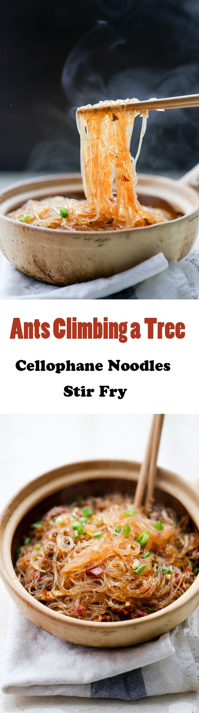 Ants Climbing a Tree-Cellophane Noodles Stir Fry | ChinaSichuanFood.com