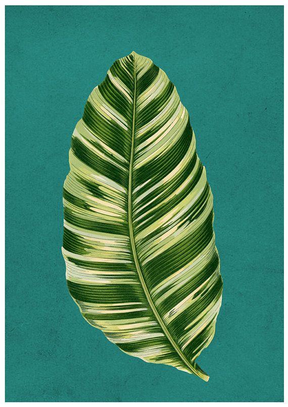 Green Banana Leaf by Finandivy on Etsy