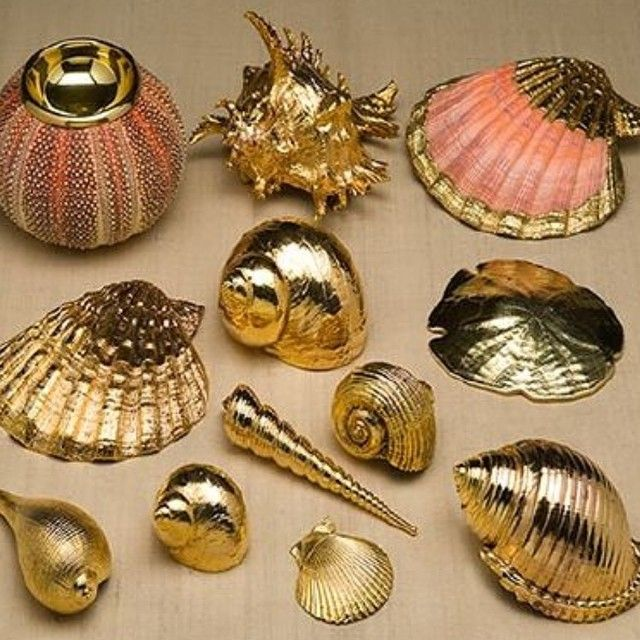 "122 Likes, 3 Comments - Jessica Goldfond (@theshinysquirrel) on Instagram: ""#gold dipped seashells I will take one of each"""