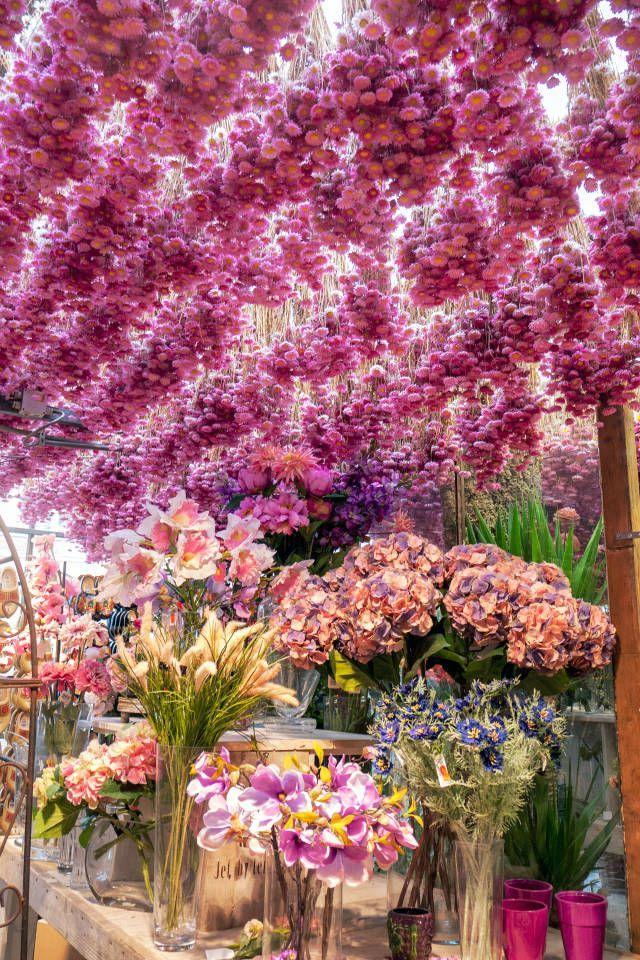 Parisian flower market | Harper's Bazaar