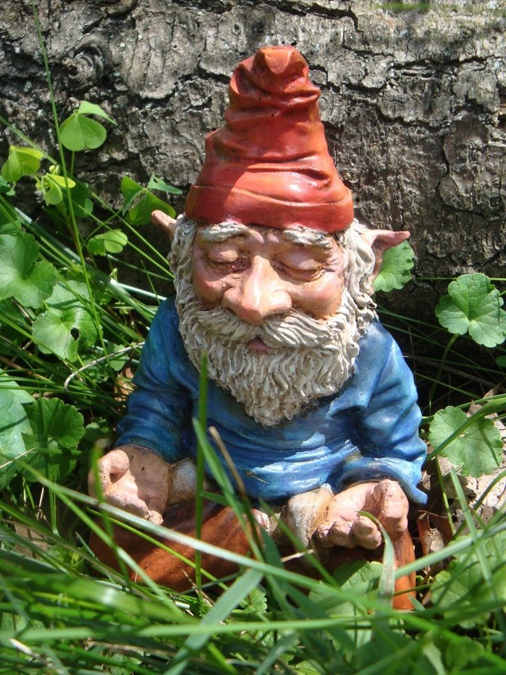 Meditating Gnome #funny #garden #gnome - When a member of my garden club travels abroad they take the club gnome along and photograph it on tour.  It went to Italy last...