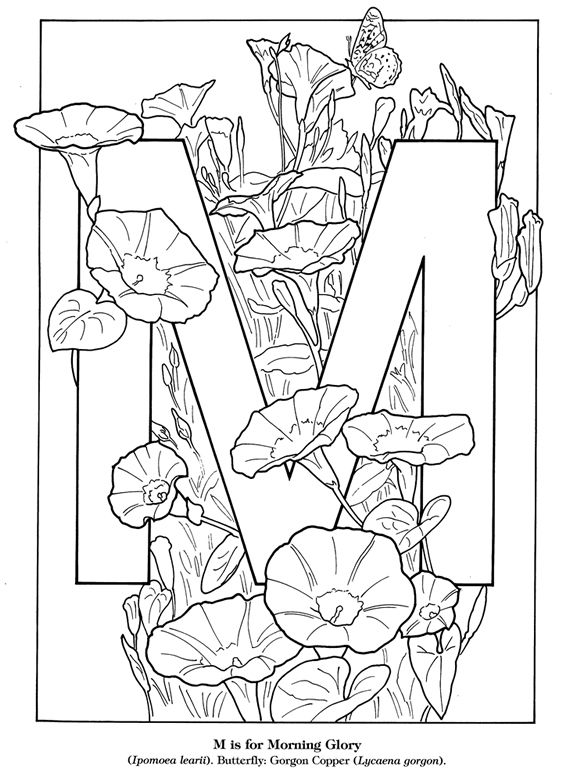 Garden Flowers Alphabet Coloring Book Welcome To Dover Publications