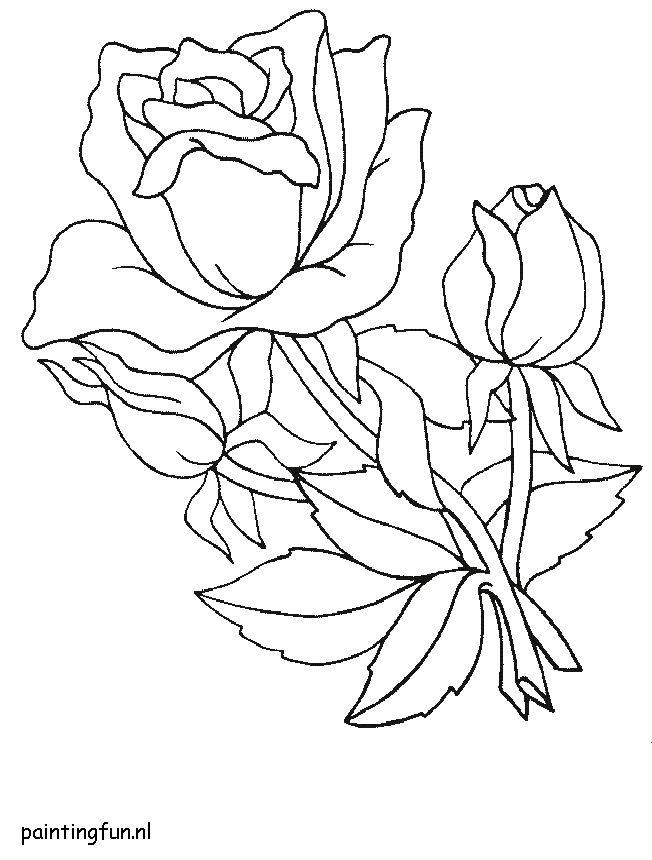 rozen boeket roos boeket kleurplaten
